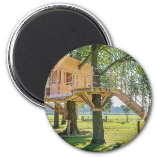 Imã Casa na árvore de madeira no carvalho com grama