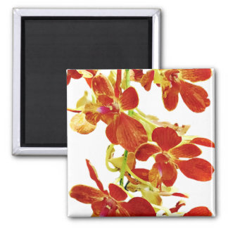 Imã Cascata de orquídeas alaranjadas