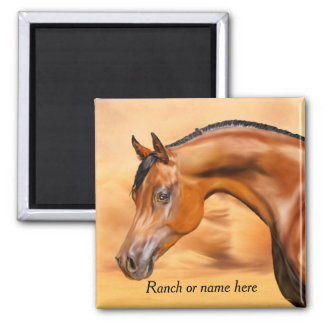 Imã Cavalo árabe da baía personalizado