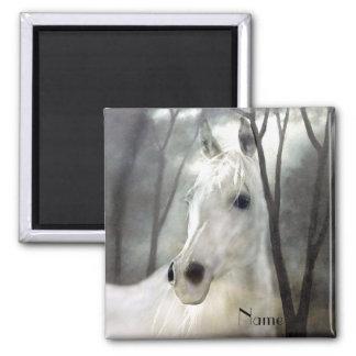 Imã Cavalo branco