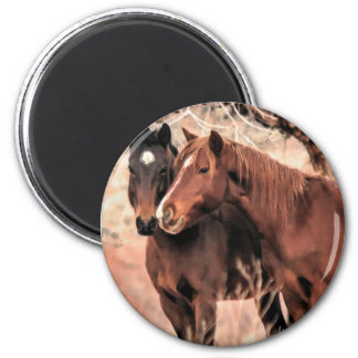 Imã Cavalos Nuzzling