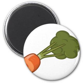 Imã Cenoura mordida