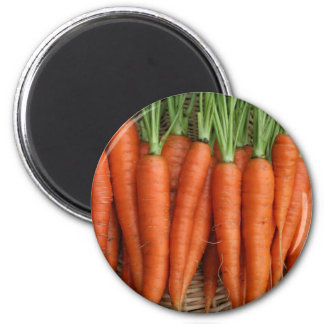 Imã Cenouras frescas da herança do jardim