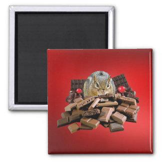 Imã Chipmunk do chocolate do dia dos namorados