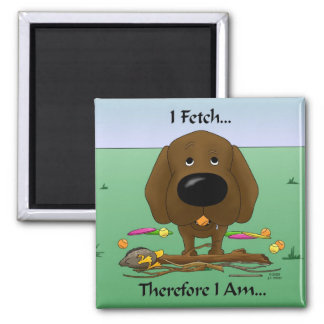 Imã Chocolate Labrador (laboratórios) - eu busco… o