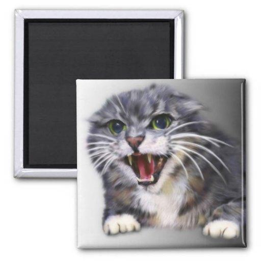 Ímã cinzento louco do gato ima de geladeira