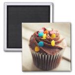 Ímã colorido da fotografia do cupcake ima de geladeira