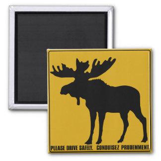 Imã Conduza por favor com segurança, sinal de tráfego,