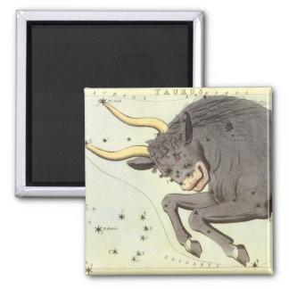 Imã Constelação de Bull do Taurus da astrologia do