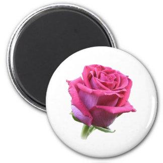Ímã cor-de-rosa do botão ímã redondo 5.08cm