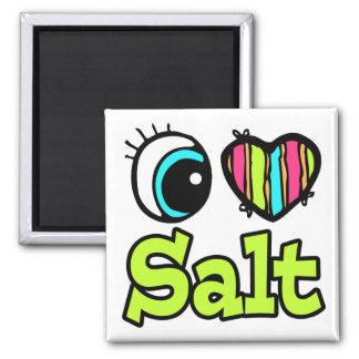 Imã Coração brilhante do olho eu amo o sal