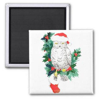 Imã Coruja lunática e meia do Natal projetadas