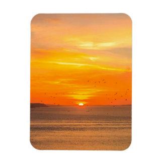 Ímã Costa do por do sol com Sun alaranjado e pássaros