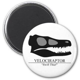 Imã Crânio do Velociraptor