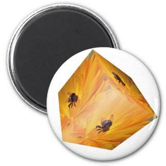 Imã Cubo amarelo com inseto e flor da abelha