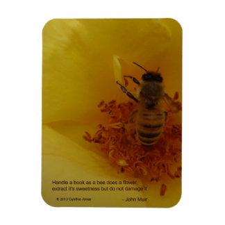 Ímã da abelha