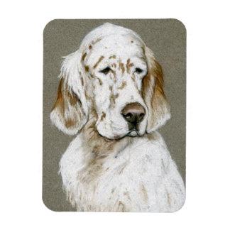 Ímã da arte do cão do setter inglês
