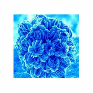 Ímã da flor escultura de fotos