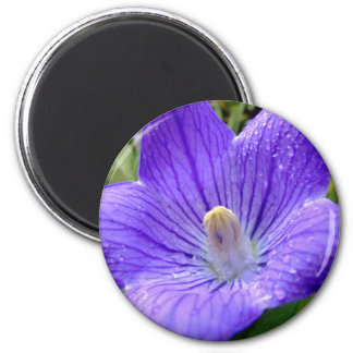Ímã da flor ímã redondo 5.08cm