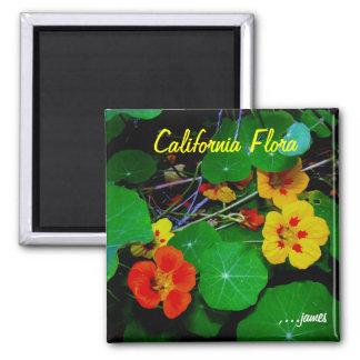 Ímã da flora de Califórnia Ímã Quadrado