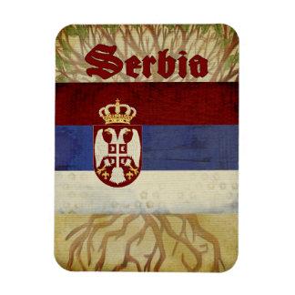 Ímã da lembrança de Serbia