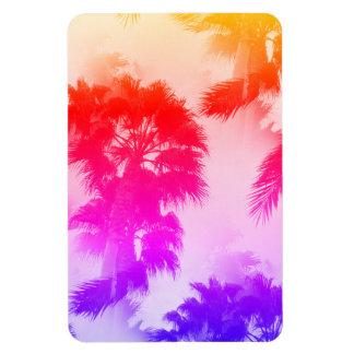 Ímã das palmeiras