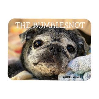 Ímã de Bumblesnot: snort do snort
