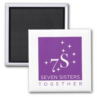 Imã de geladeira de sete irmãs junto