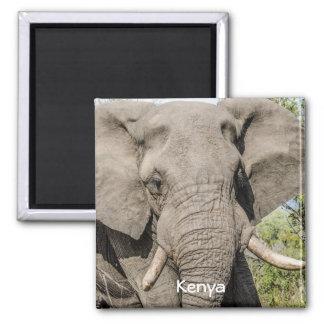 Imã de geladeira do elefante - Kenya