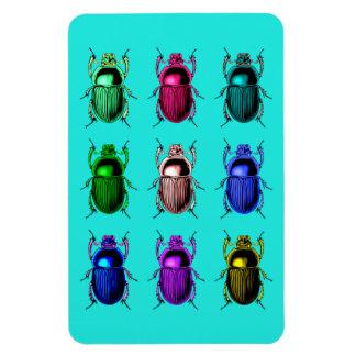 Ímã Desinsetar para fora: Insetos coloridos do besouro