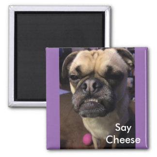 Imã Diga o queijo