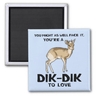 Imã Dik-Dik ao amor