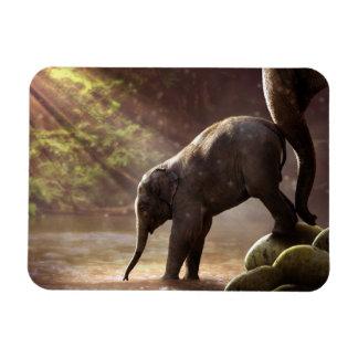 Ímã do banho do elefante do bebê primeiro