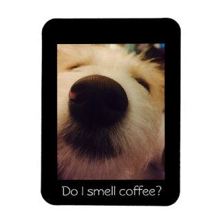 Ímã do café do cão