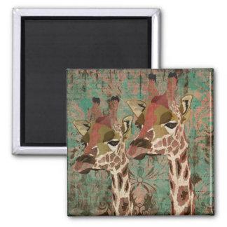 Ímã do damasco dos girafas de Rosa Ímã Quadrado