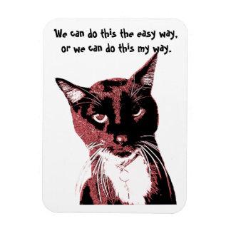 Ímã do gato
