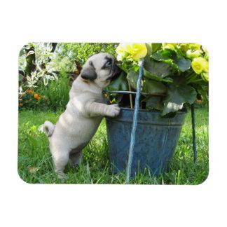 Ímã do Pug e das flores