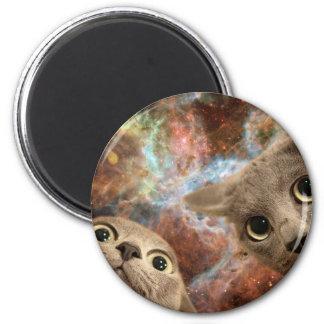 Imã Dois gatos cinzentos no espaço antes de uma