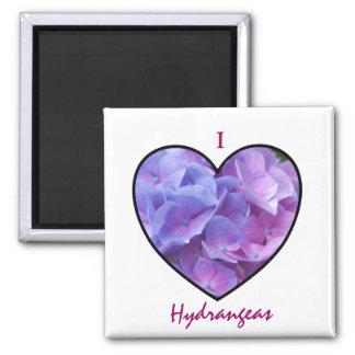 Ímã dos Hydrangeas Ímã Quadrado