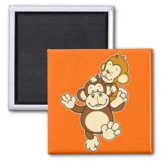 Ímã dos irmãos do macaco ímã quadrado