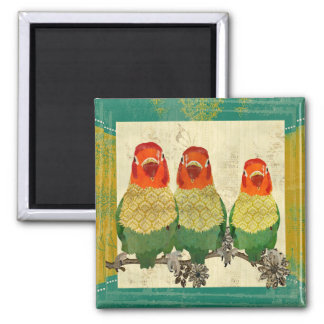 Ímã dos pássaros do amor do ouro do vintage ímã quadrado