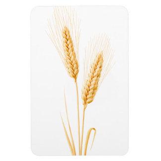 Ímã Duas orelhas do trigo