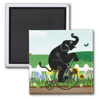 Imã Elefante que monta uma bicicleta