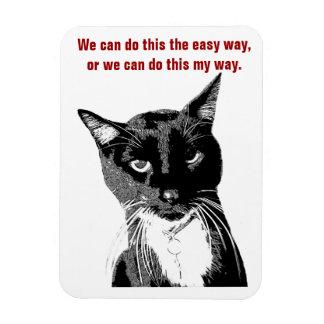 Ímã engraçado do gato