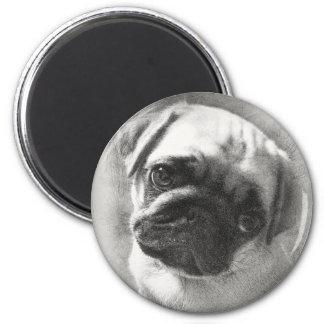 Imã Esboço do cão de filhote de cachorro do Pug