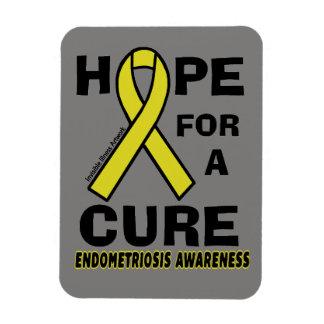 Ímã Esperança para uma endometriose da cura…
