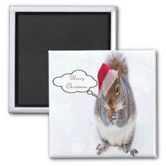 Imã Esquilo do feriado