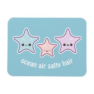 Ímã Estrela do mar bonito da praia