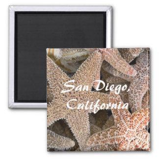 Imã Estrela do mar toda ao redor, San Diego,