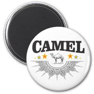 Imã estrelas do camelo